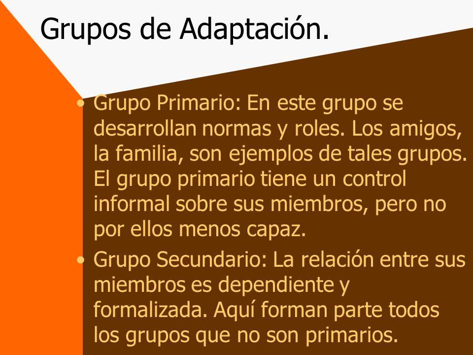 Grupos de Adaptación.