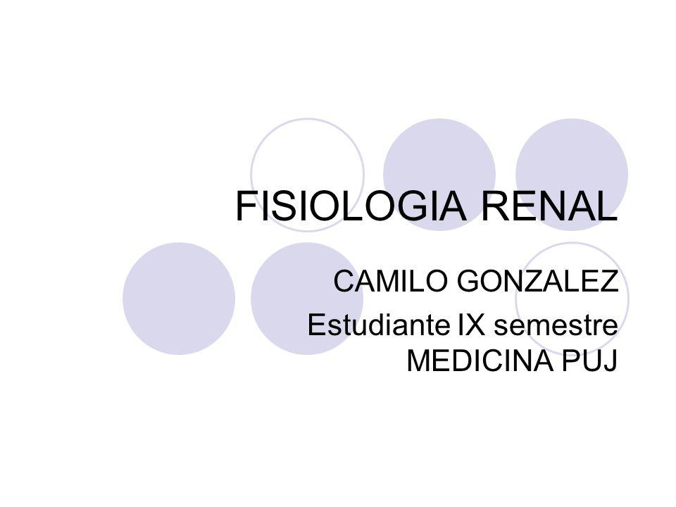CAMILO GONZALEZ Estudiante IX semestre MEDICINA PUJ
