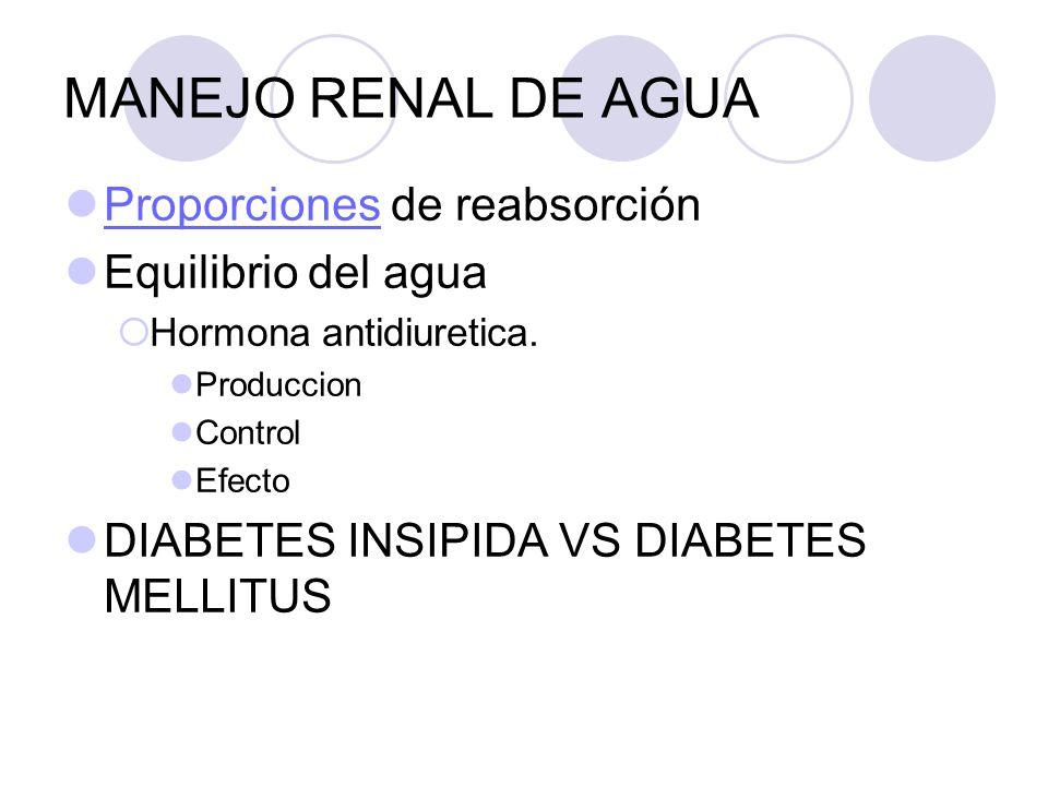 MANEJO RENAL DE AGUA Proporciones de reabsorción Equilibrio del agua