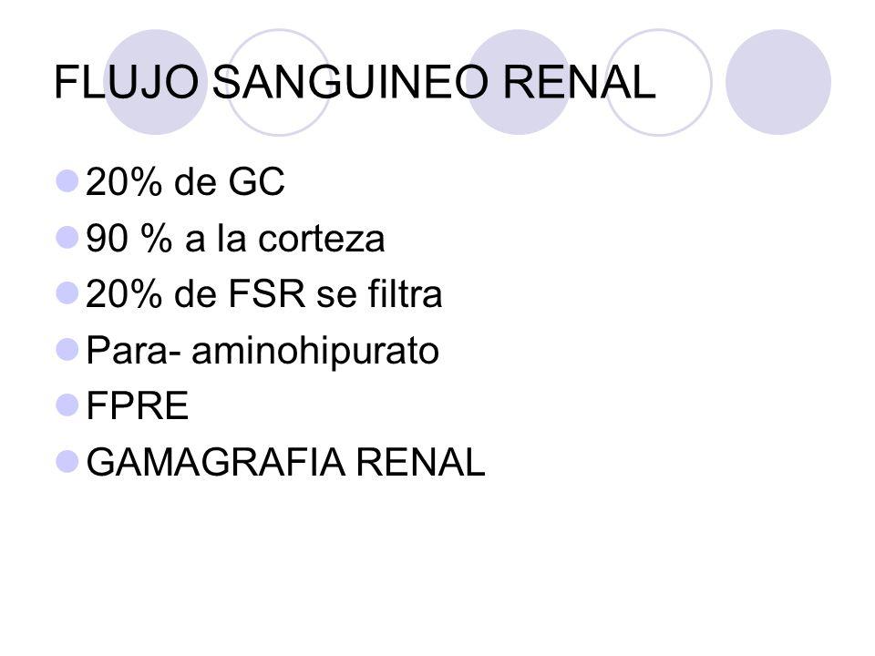 FLUJO SANGUINEO RENAL 20% de GC 90 % a la corteza 20% de FSR se filtra