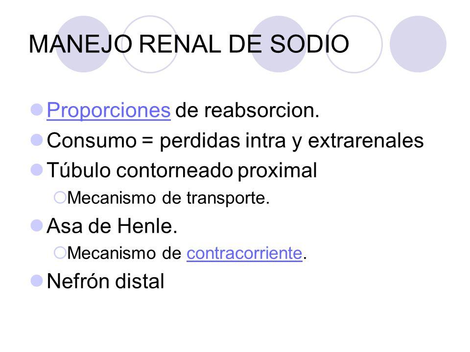 MANEJO RENAL DE SODIO Proporciones de reabsorcion.