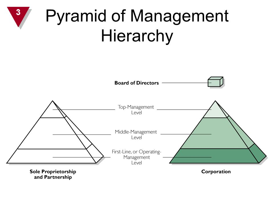 Pyramid of Management Hierarchy