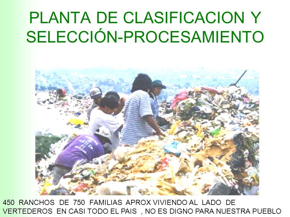PLANTA DE CLASIFICACION Y SELECCIÓN-PROCESAMIENTO