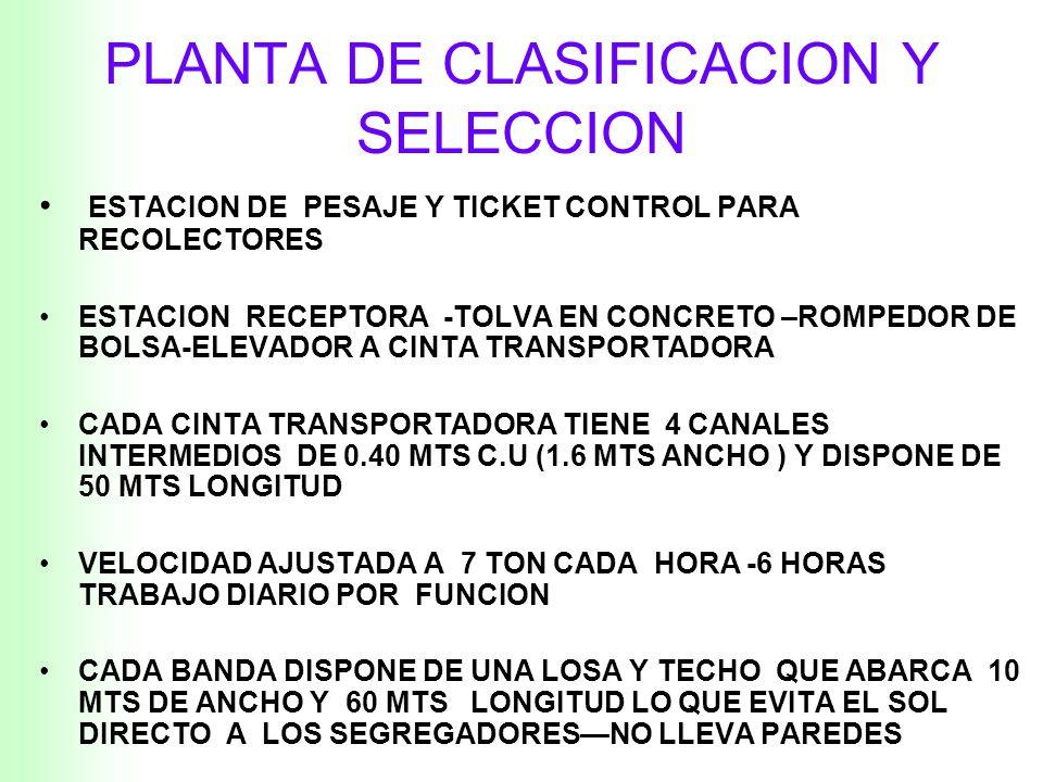 PLANTA DE CLASIFICACION Y SELECCION