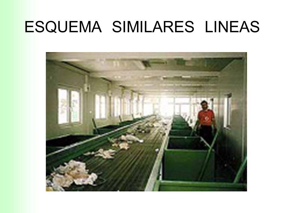 ESQUEMA SIMILARES LINEAS