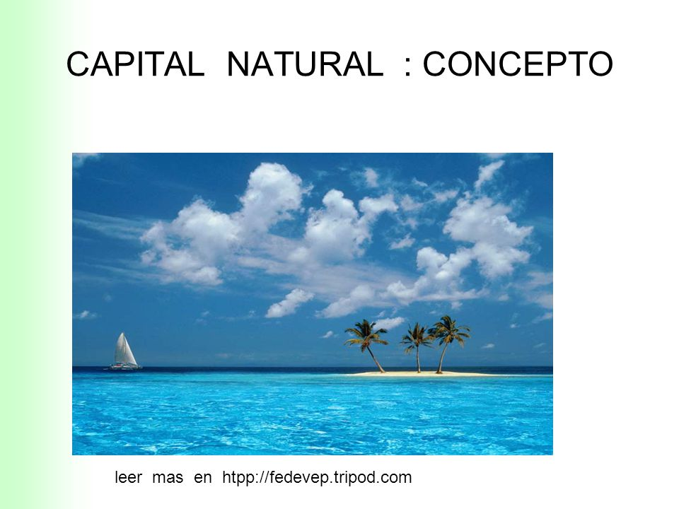 CAPITAL NATURAL : CONCEPTO