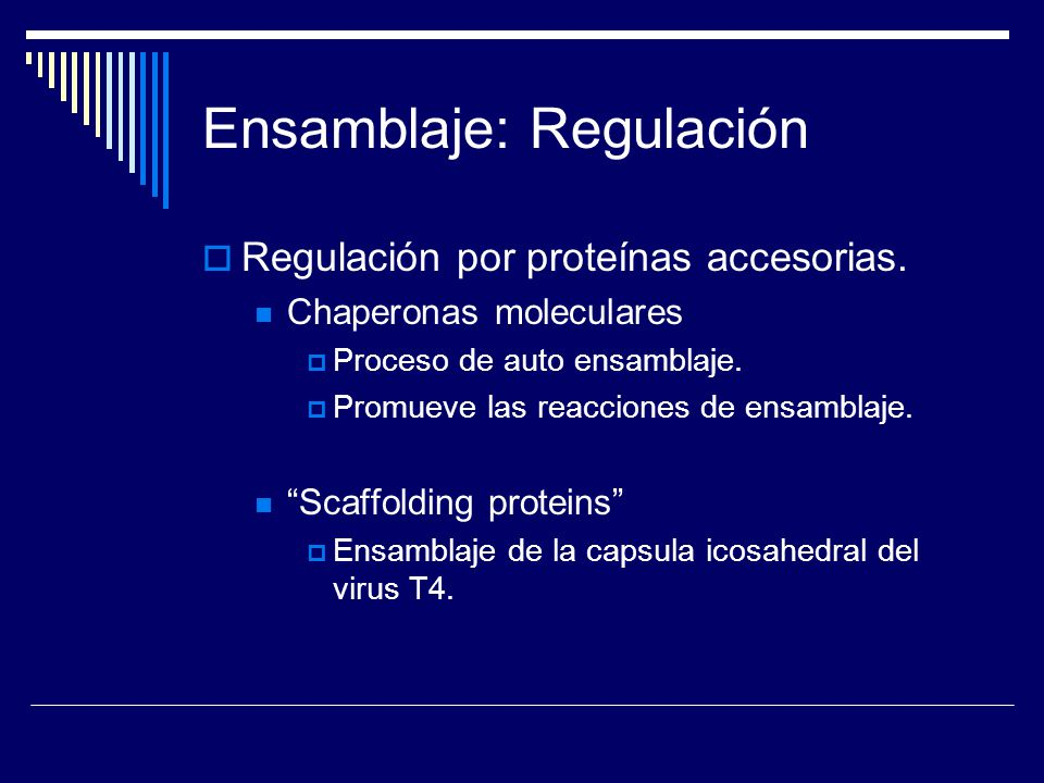 Ensamblaje: Regulación