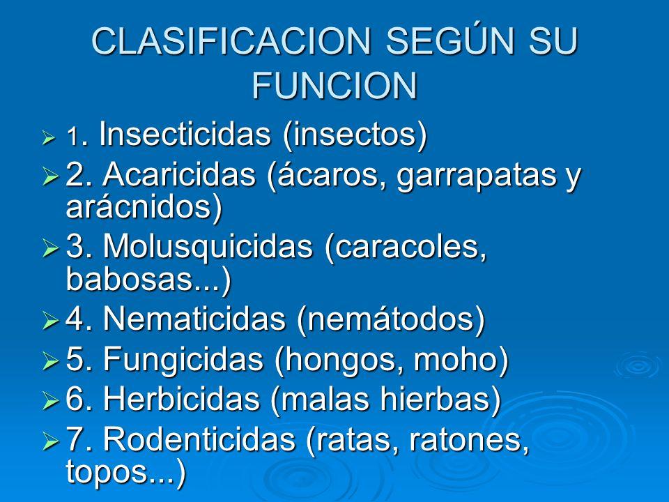 CLASIFICACION SEGÚN SU FUNCION