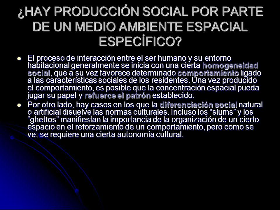 ¿HAY PRODUCCIÓN SOCIAL POR PARTE DE UN MEDIO AMBIENTE ESPACIAL ESPECÍFICO