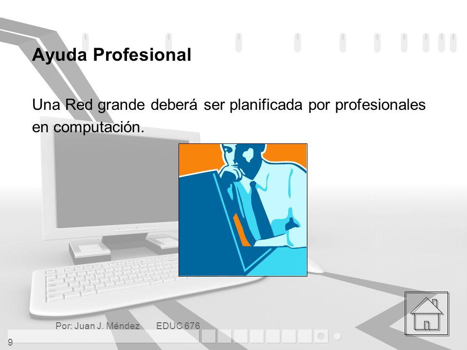 Ayuda Profesional Una Red grande deberá ser planificada por profesionales.