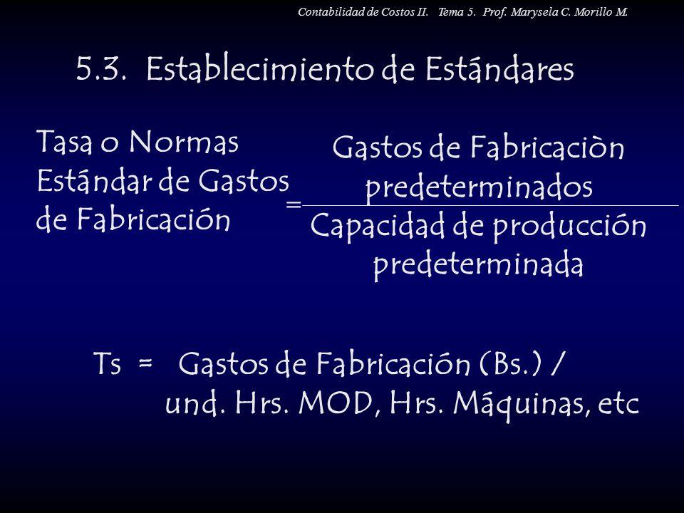 5.3. Establecimiento de Estándares