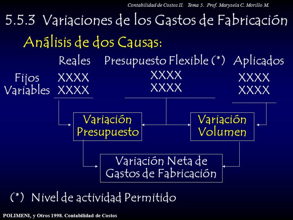 5.5.3 Variaciones de los Gastos de Fabricación Análisis de dos Causas: