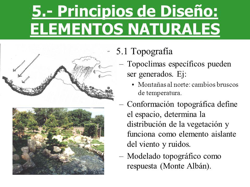 5.- Principios de Diseño: ELEMENTOS NATURALES