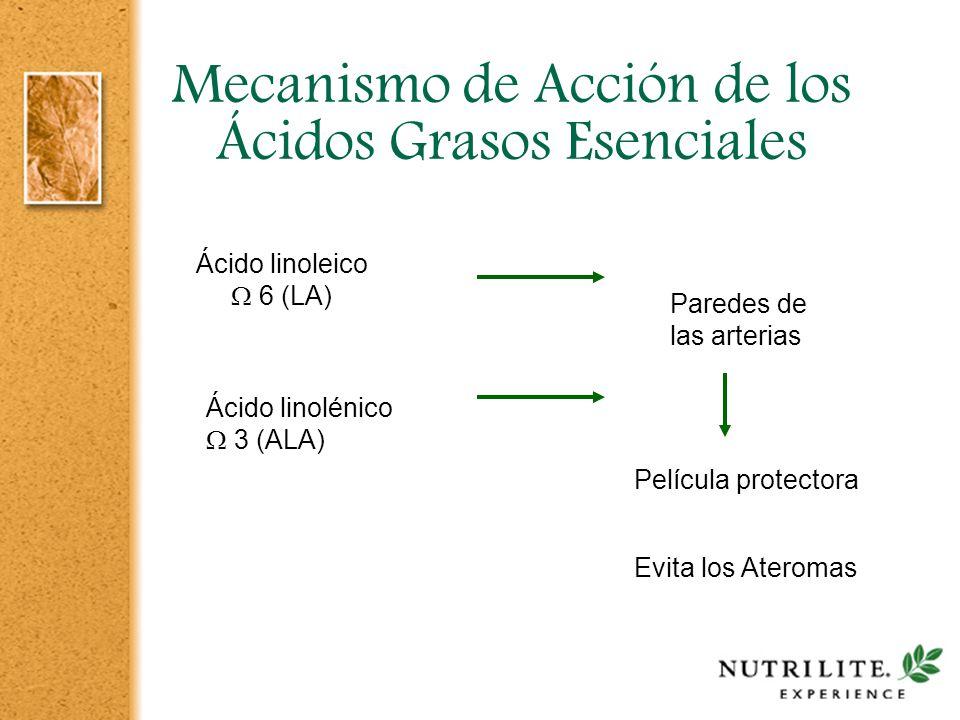 Mecanismo de Acción de los Ácidos Grasos Esenciales