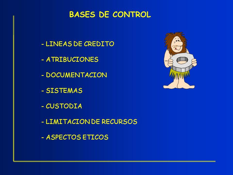 BASES DE CONTROL - LINEAS DE CREDITO - ATRIBUCIONES - DOCUMENTACION