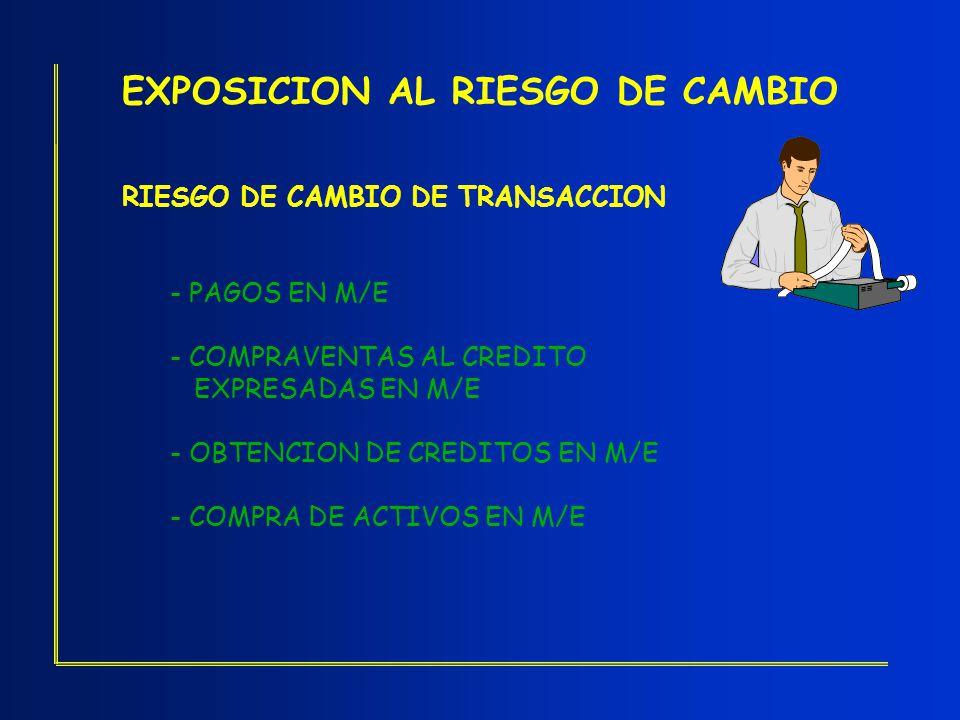 EXPOSICION AL RIESGO DE CAMBIO
