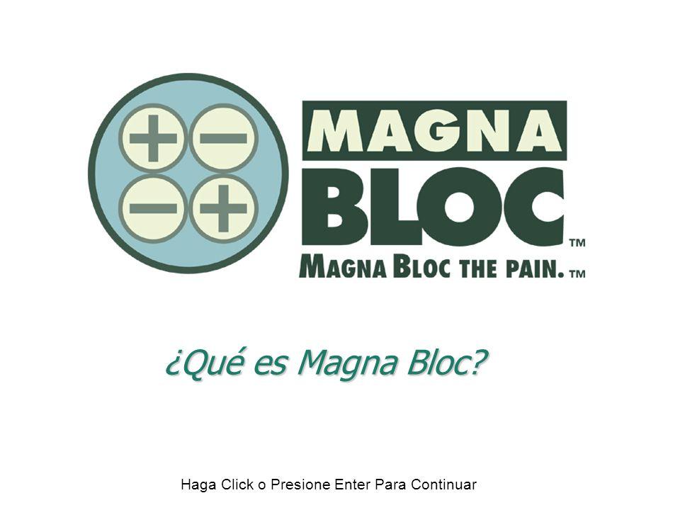 ¿Qué es Magna Bloc. Lo primero que tenemos que entender sobre Magna Bloc es de qué se trata.