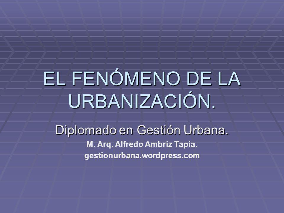 EL FENÓMENO DE LA URBANIZACIÓN.