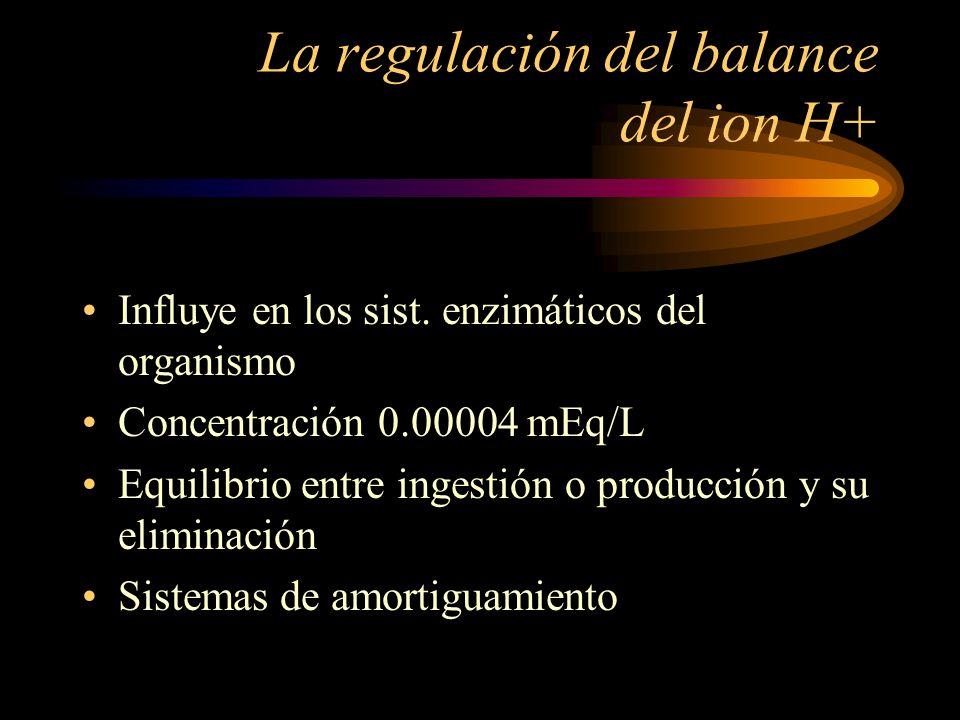 La regulación del balance del ion H+