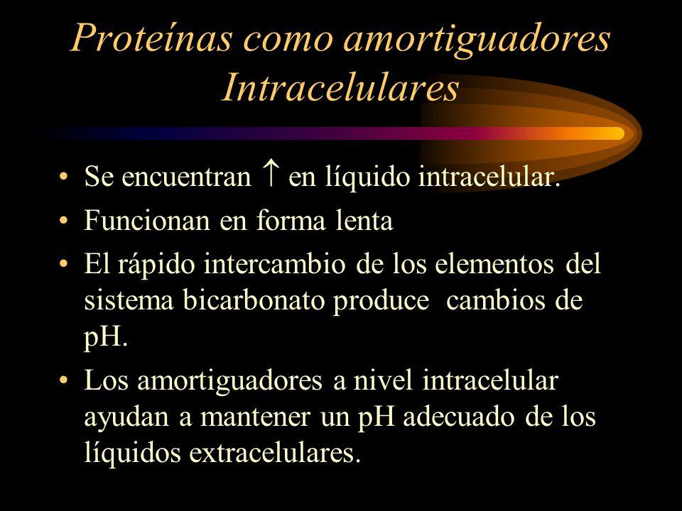 Proteínas como amortiguadores Intracelulares