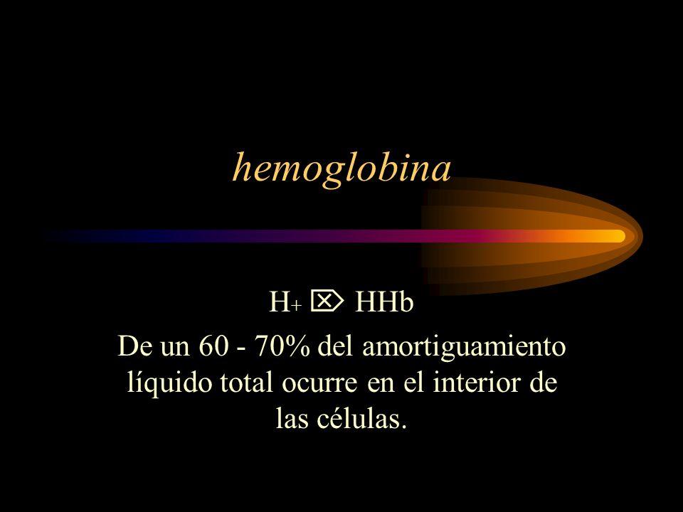 hemoglobina H+  HHb.