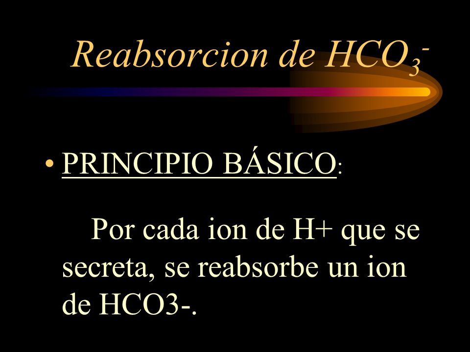 Reabsorcion de HCO3- PRINCIPIO BÁSICO: Por cada ion de H+ que se secreta, se reabsorbe un ion de HCO3-.