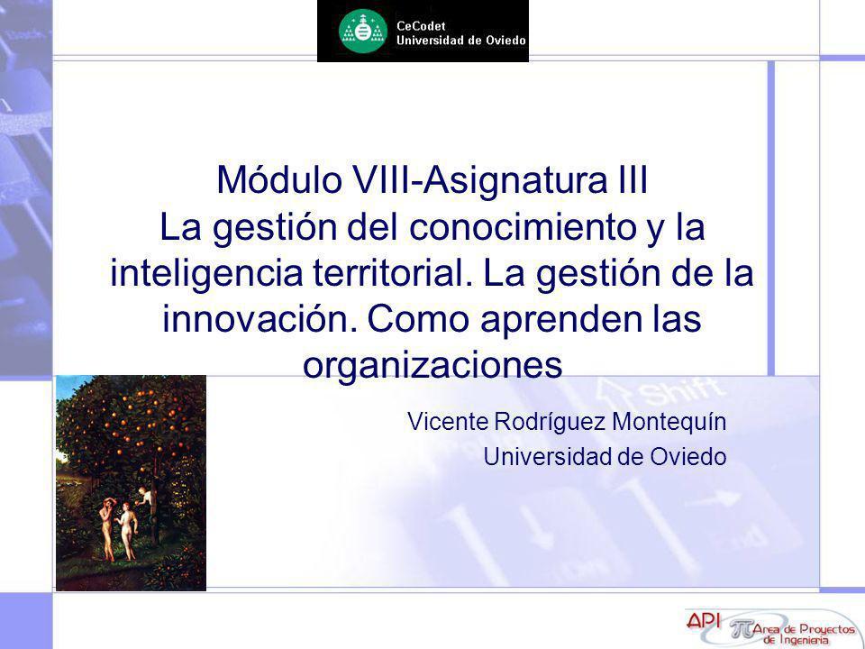 Vicente Rodríguez Montequín Universidad de Oviedo