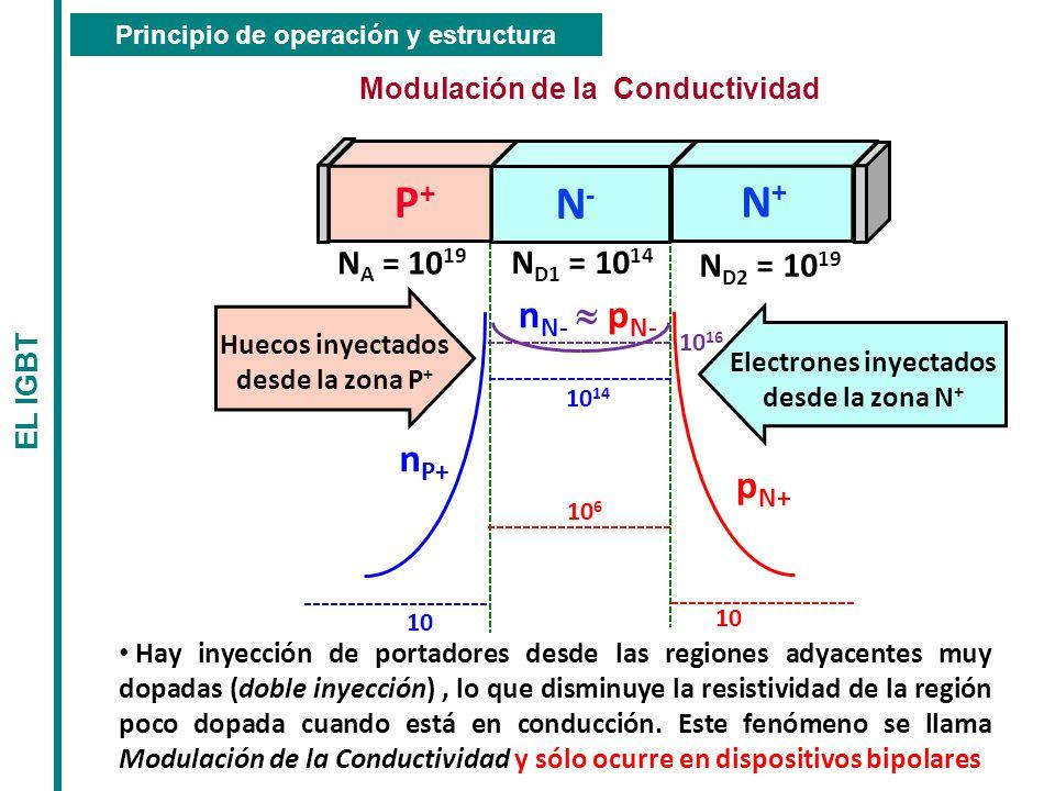 Principio de operación y estructura Modulación de la Conductividad