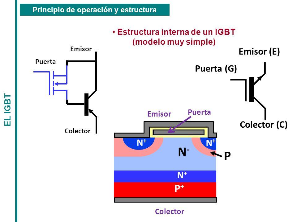 Principio de operación y estructura Estructura interna de un IGBT
