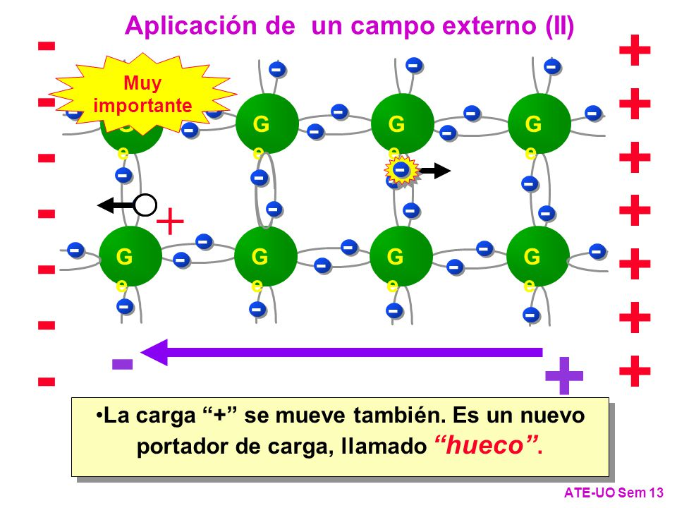 ------- + + + + + + + + + - - - Aplicación de un campo externo (II) Ge