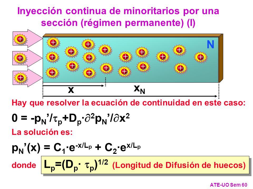 pN'(x) = C1·e-x/Lp + C2·ex/Lp