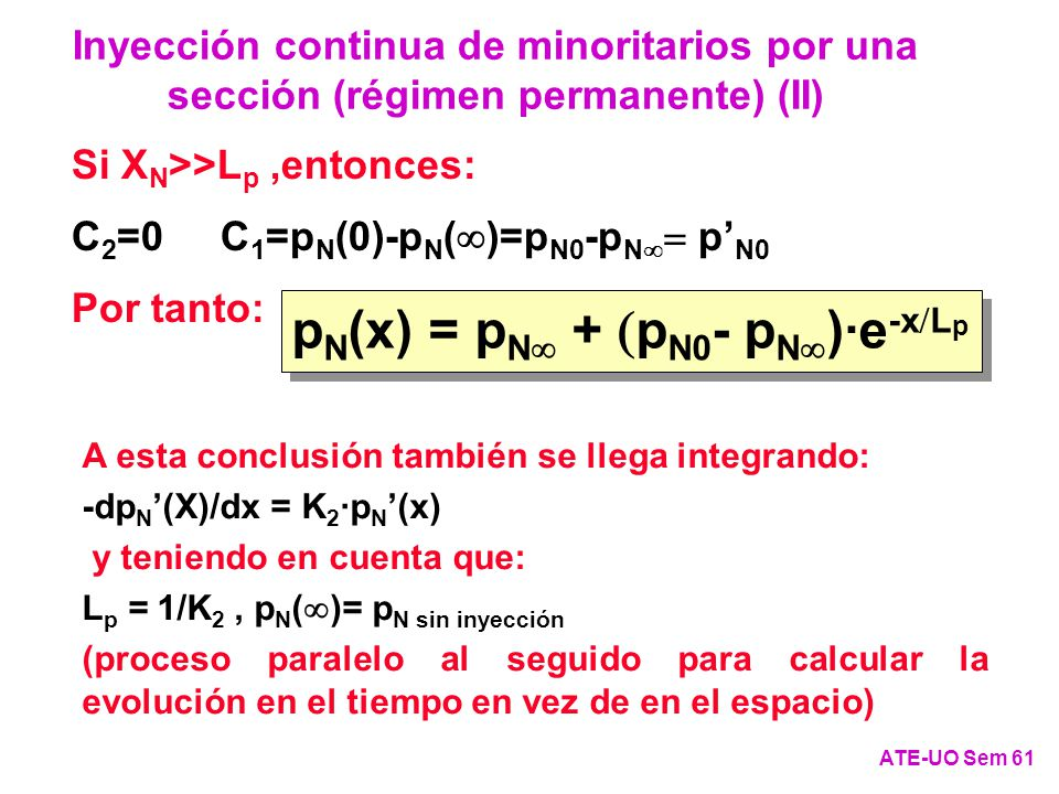 pN(x) = pN+pN0-pN)·e-xLp