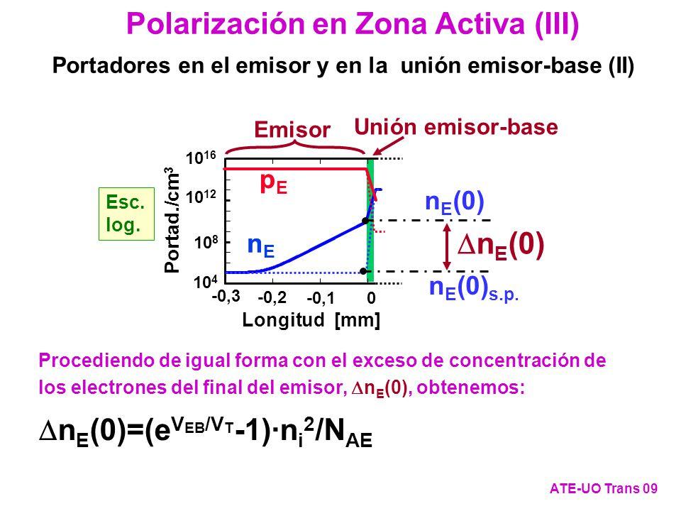 Polarización en Zona Activa (III)