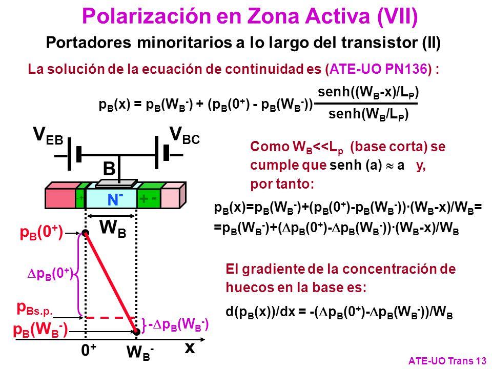 Polarización en Zona Activa (VII)