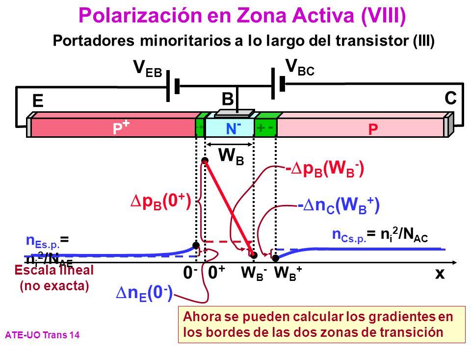 Escala lineal (no exacta)