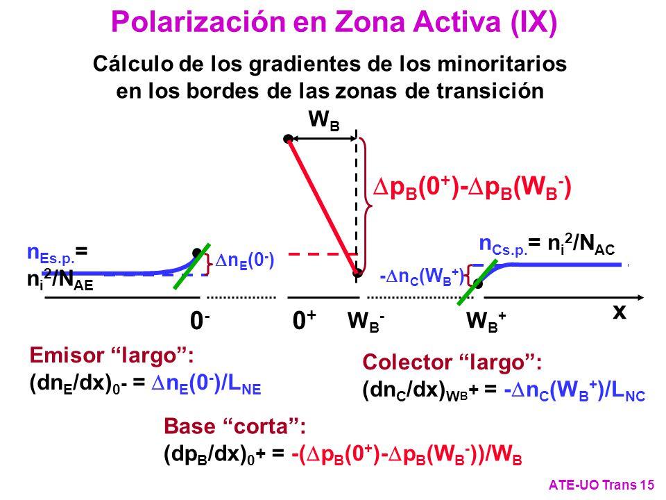 Polarización en Zona Activa (IX)