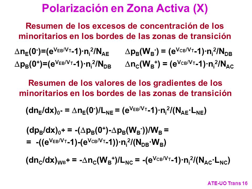 Polarización en Zona Activa (X)