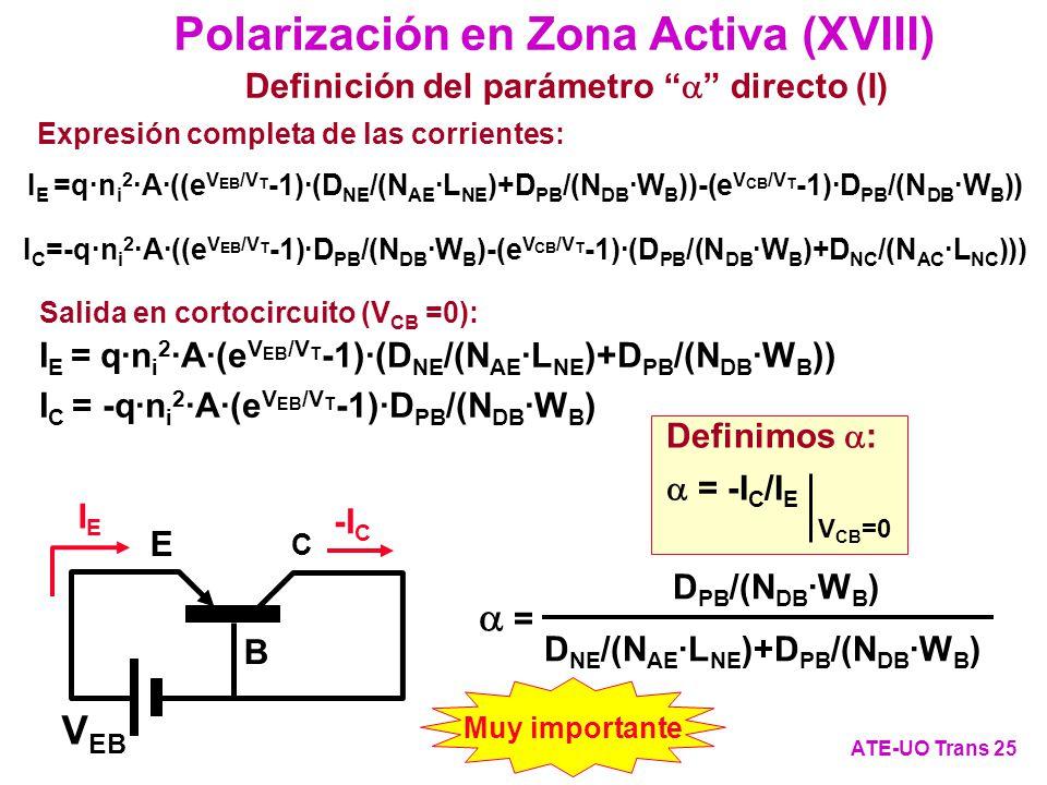 Polarización en Zona Activa (XVIII)
