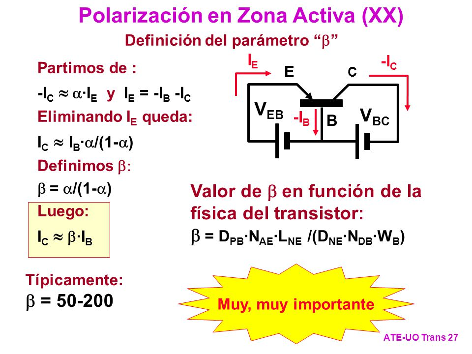 Polarización en Zona Activa (XX)