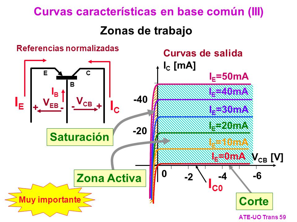 Curvas características en base común (III)