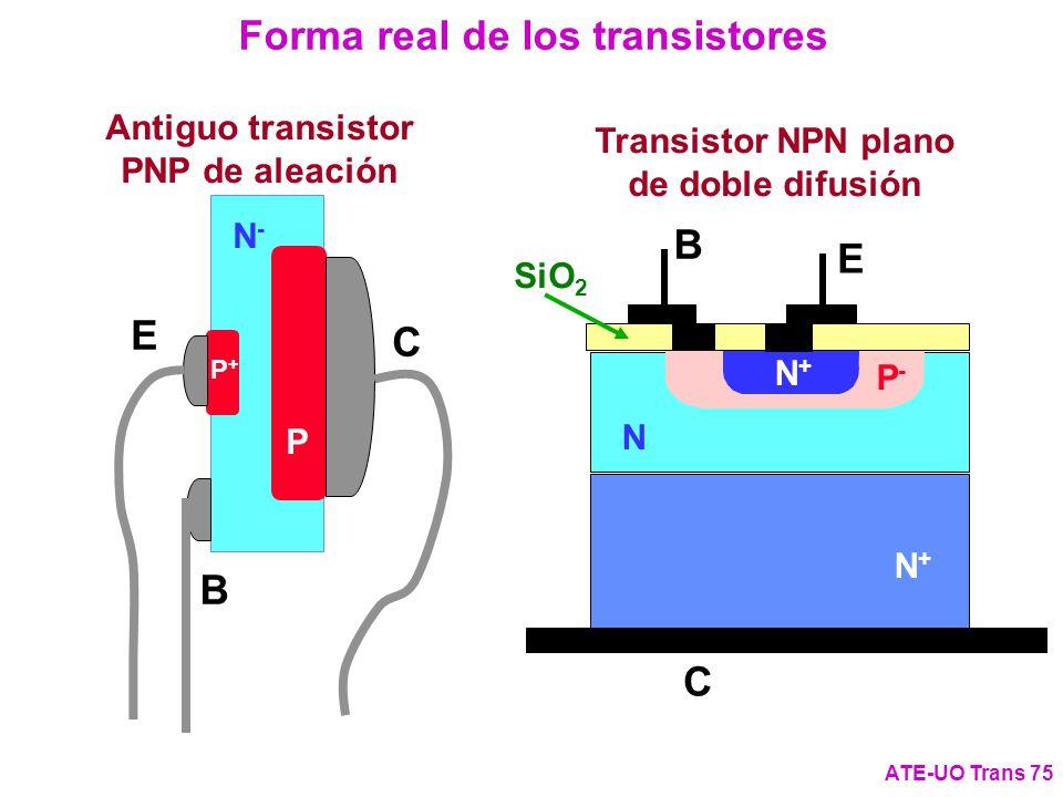 Forma real de los transistores