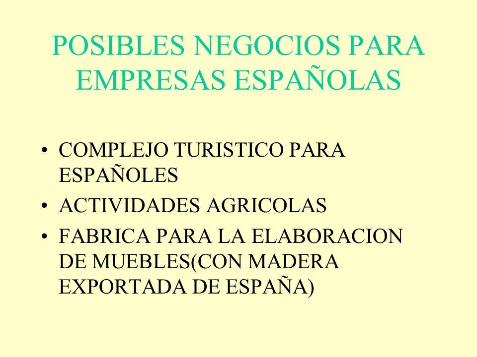 POSIBLES NEGOCIOS PARA EMPRESAS ESPAÑOLAS