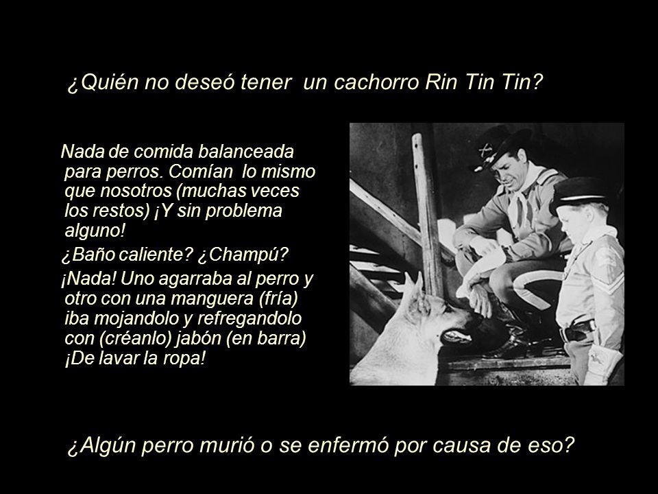 ¿Quién no deseó tener un cachorro Rin Tin Tin