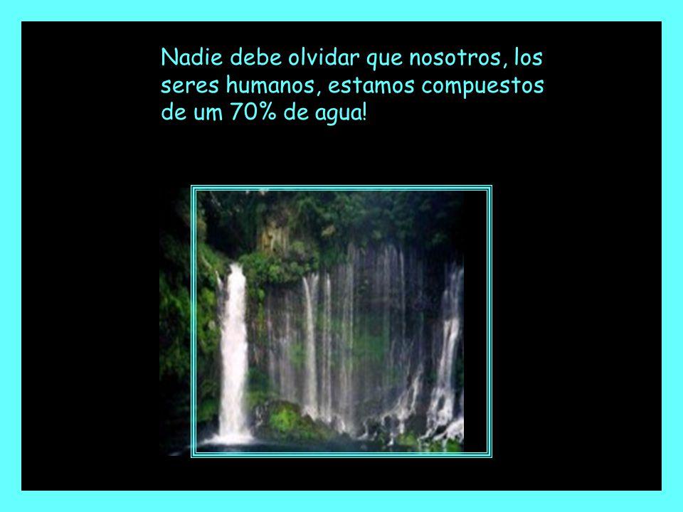Nadie debe olvidar que nosotros, los seres humanos, estamos compuestos de um 70% de agua!
