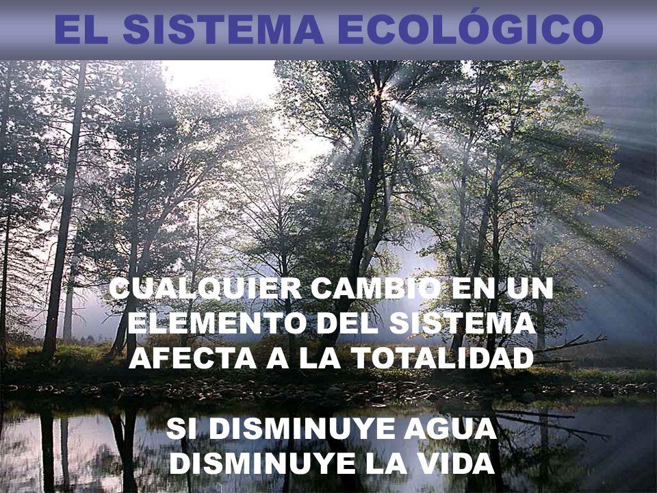 EL SISTEMA ECOLÓGICO CUALQUIER CAMBIO EN UN ELEMENTO DEL SISTEMA AFECTA A LA TOTALIDAD.