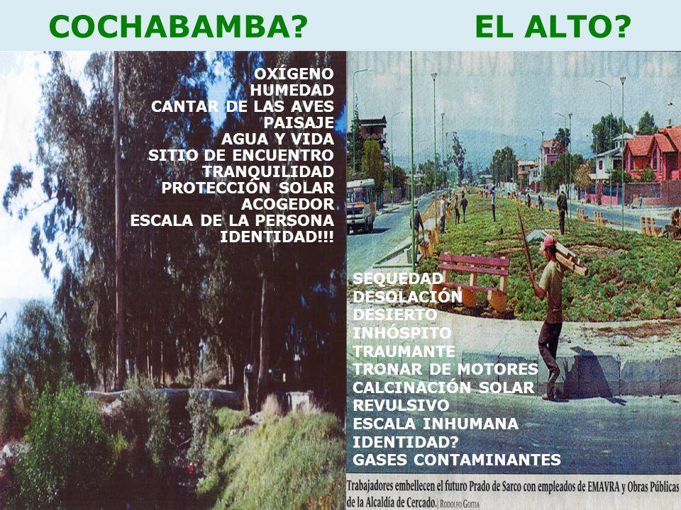 COCHABAMBA EL ALTO OXÍGENO HUMEDAD CANTAR DE LAS AVES PAISAJE