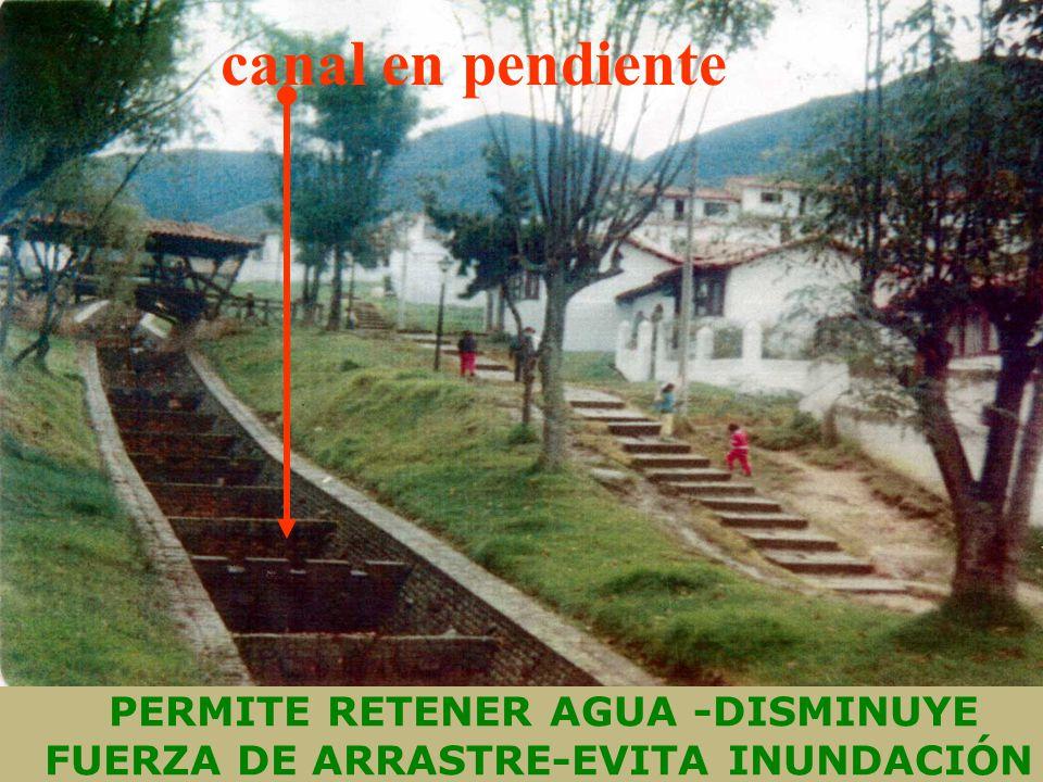 PERMITE RETENER AGUA -DISMINUYE FUERZA DE ARRASTRE-EVITA INUNDACIÓN