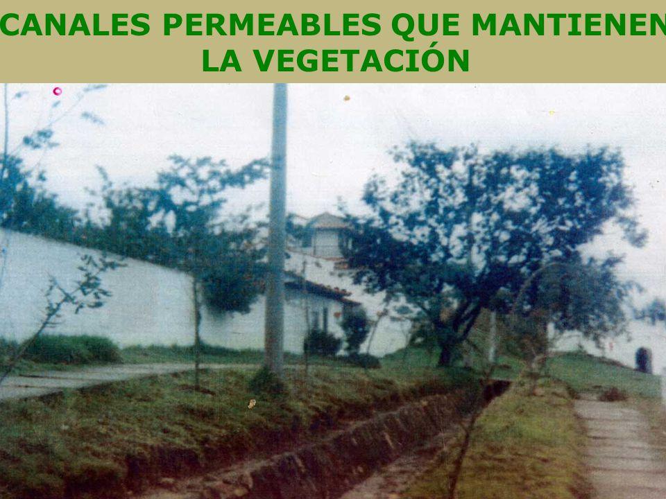 CANALES PERMEABLES QUE MANTIENEN LA VEGETACIÓN