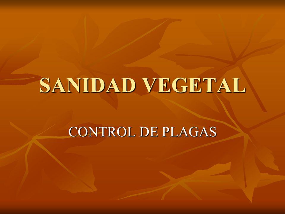 SANIDAD VEGETAL CONTROL DE PLAGAS