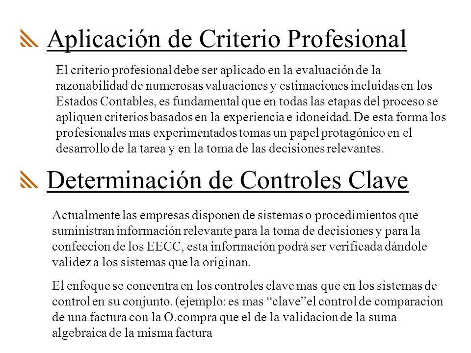 Aplicación de Criterio Profesional
